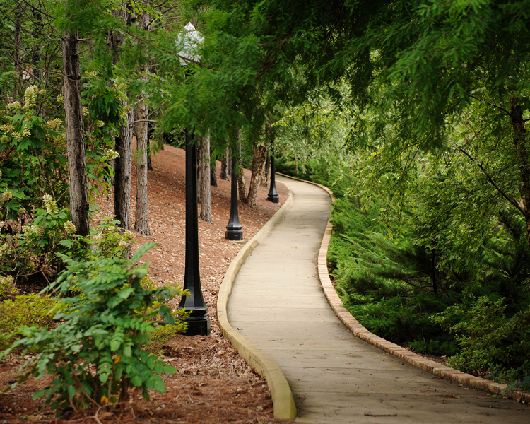 winding path at Marr's Spring